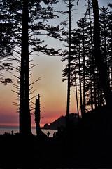 Oregon 9A_0068 (alyssa's gallery) Tags: oregon oregoncoast oswaldwest shortsands