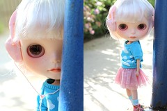 Dolly Diptych Weekly 18\52