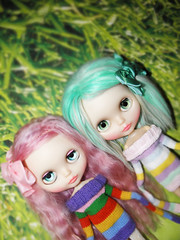 MSR Sisters in Stripes