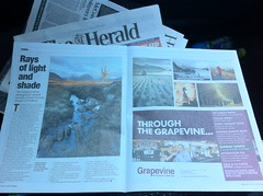 The Herald (Alan Weir) Tags: scotland swan loch lomond theherald visitscotland