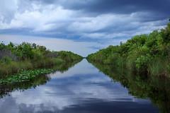 Canal (sailwings) Tags: nature canon landscape nationalpark florida everglades 1740 60d