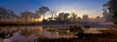 Morning Lights (southern_skies) Tags: morning trees sky water fog creek australia queensland sunsilhouette