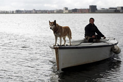 Husky on a boat near Amsterdam (Simon Christiaanse) Tags: people dog lake man water amsterdam animals boat husky europe nederland durgerdam ijburg buitenij simonchristiaanse