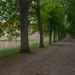 Rosenholm Slot_1