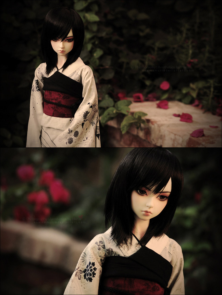 asian dolls escorts corno