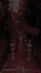 鬼灯の冷徹 画像