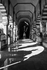 _MG_0046 (Krystiano2280) Tags: blackandwhite italy milan art beautiful italia milano blacknwhite cimitero monumentale bestshot bestpic bestshotoftheday begreat bestpicoftheday
