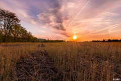 The Farmer's Ground (bmillerx94) Tags: sunset pop current