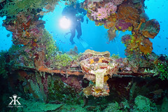 Truk Scuba Diving 2016, Shinkoku Maru, gyro repeater on the remains of the bridge WM (divemasterking2000) Tags: ocean travel lost photography japanese divers travels war king ship underwater pacific wwii dive traces scuba diving lagoon adventure shipwreck scubadiving fsm diver states truk adventures sunken sunk wreck scubadive artifacts tanker warship maru micronesia federated underwaterphotography 2016 chuuk battlesite wreckdive wreckdiving truklagoon tracesofwar shinkokumaru japaneseship shinkoku kaptures wreckdives kingkaptures kingkapturesphotography