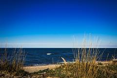 Tra le dune (SDB79) Tags: panorama mare riva dune cielo spiaggia paesaggio molise petacciato