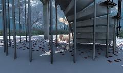 VISIONAIRE HOMEWORK, CLASS 1 (RAW) (Dakota Lavarock) Tags: winter snow stairs balloon