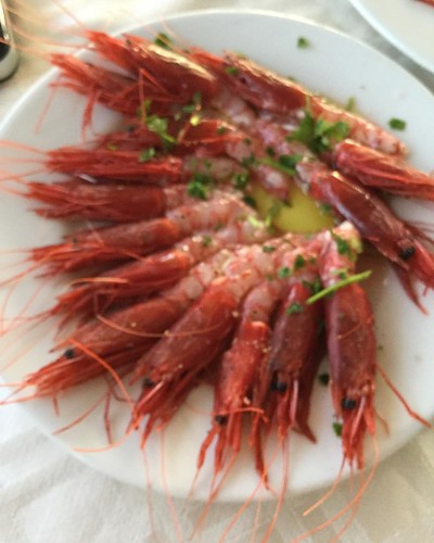 Mazara shrimp