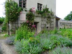 DSC05558 (Mr.J.Martin) Tags: germany austria burghausen castle burgfest salzach bavaria gapp exchange