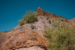 5R6K2942 (ATeshima) Tags: arizona nature havasu