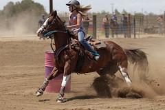 Fly-N-High (Tackshots) Tags: california horse riding cowgirl applevalley barrelracing ca18 nbha flynhigh