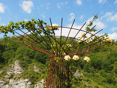 Rose in Cage (# 8) (JP Newell) Tags: cahors midipyrnesregion roses french france flowers gardens