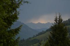 DSC_4916 (d90-fan) Tags: outdoors austria sterreich natur rauris hohetauern tauern krumltal raurisertal