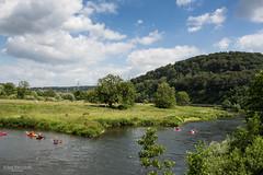 Two latecomers (Zaphod Beeblebrox 1970) Tags: summer river germany landscape deutschland essen sommer bluesky area nrw fluss bochum landschaft ruhr ruhrgebiet tal kajak kajaking valleyruhrtal