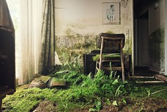 overgrown (Nils Grudzielski) Tags: old green nature overgrown canon lost hotel chair decay leer places forgotten urbanexploration rotten abandonedplaces marode lostplaces verlasseneorte