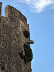 Cyrano a Aigues Mortes ;-) (fotomie2009) Tags: francia aigues mortes aiguesmortes france gard languedoc aigas mrtas walls mura ramparts remparts cinta muraria medioevo medievale medioevale mdivale