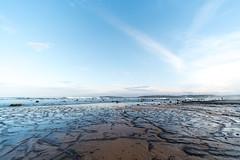 M1140380.jpg (meerecinaus) Tags: longreef beach collaroy newsouthwales australia au