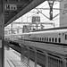 Shizuoka Station Platform