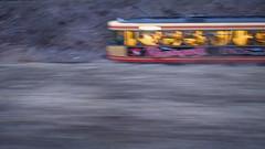 Sie fahrt mit dem Zug uber das Meer und durchquert einen nachtlichen Wald (vaquey) Tags: motion blur speed und meer mit zug das wald dem ricoh einen sie grd4 uber vaquey fahrt durchquert nachtlichen