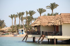 IMG_4012 (Qatar Earth  ) Tags: jeep earth safari cairo r e doha qatar  adnan                   alhammadi   qatagypt balgouna