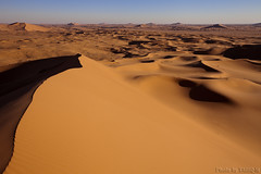 From the top of dunes (TARIQ-M) Tags: shadow texture sahara landscape sand waves pattern desert ripple patterns dunes wave ripples riyadh saudiarabia      canoneos5d    goldensand            canonef1635mmf28liiusm  dahna  canoneos5dmarkii          aldahna