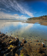 Puget Sound Beach (l.gallier) Tags: spring pugetsound hdr photomatix cs6 desmoineswa vetorama lgallier lightroom41