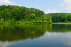 Big Hill Pond State Park (bhophotos) Tags: trees usa lake reflection nature landscape geotagged nikon tennessee nikkor midsouth westtennessee d80 mcnairycounty 2470mmf28g bighillpond bighillpondstatepark bruceoakley travismcnattlake