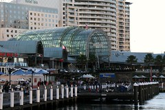 2012 Sydney: Darling Harbour  #6 (dominotic) Tags: park bridge urban tree green bird art history nature water fountain ferry architecture boats flag banner sydney australia ibis nsw newsouthwales darlingharbour pyrmont monorail waterfeature 2012 bronzesculpture tumbalongpark sssouthsteyne