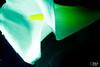 calla-9 (Soniett@) Tags: il mio fiore preferito