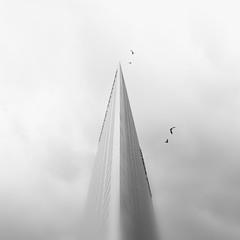 temple II, 2011 (p r i m e r) Tags: blackandwhite monochrome birds architecture losangeles