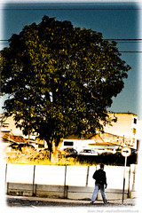 7 (Junior AmoJr) Tags: street color art sol arquitetura brasil photoshop canon sopaulo chuva pb paisagem junior cor snapfish gettyimages lightroom t3i atibaia photostreet itsnoon gettyimagesandtheflickrcollection gettyimagesbrazil amojr junioramojr crowdart oliveirajunior riafestival