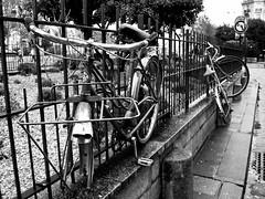 La vie d'un vlo en ville est dificile (R.Iznardo) Tags: city bw paris france monument monumento ciudad notredame francia ville pars 6eme