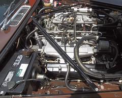 Jaguar XJ12 L (jag9889) Tags: show cats brown classic car sedan newjersey automobile antique essexcounty nj exhibition transportation vehicle motor jaguar montclair sponsor 2012 xj xj12 houseandgardens vanvleck catsinthegarden xj12l jag9889 y2012 madisonjaguar