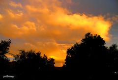 Sunset Blacktown (pat.bluey) Tags: sunset rainbow silhouettes australia newsouthwales blacktown 1001nights coth supershot thegalaxy flickraward 1001nightsmagiccity sunrays5