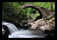 Le pont roman du Parayre, Peyrusse-le-Roc, Aveyron (lyli12) Tags: france nature nikon eau pont paysage filet cascade campagne aveyron ruisseau midipyrénées poselongue d3000