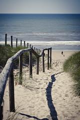 Beach Noordwijkerhout 2 (fransenmatthijs) Tags: sea beach water netherlands canon sand noordzee duinen noordwijk 24105l ef24105mm 5dmarkii noordijkerhout
