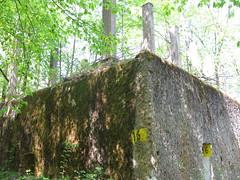 2012-050437 (bubbahop) Tags: ruins thirdreich nazis wwii poland worldwarii wolfs hitlers worldwar2 2012 lair hqs bunkers okh ketrzyn wolfsschanze mamerki kętrzyn mauerwald europetrip25