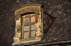 Chroniques Marchiennes (13) (Jean-Luc Léopoldi) Tags: roof sunshine evening decay dessin soir toit derelict abandonné chienassis