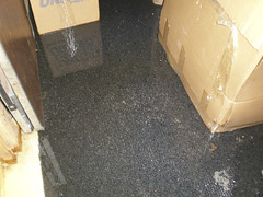 Basement flooding by State Farm, on Flickr