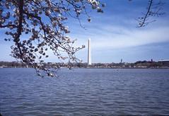 Washington Monument Washington DC 1977 Scanned Image (smata2) Tags: canon washingtondc photo dc scanned ektachrome nationscapital minoltascandualiv