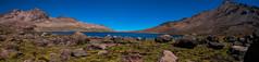 Laguna (faltimiras) Tags: park volcano national np laguna parc nacional altura altiplano volcan volca sajama vizcacha pomerape altipla panicota