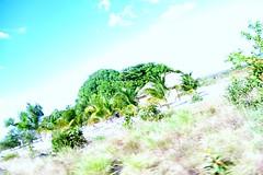Comunidade Indgena Maruwai (Misso Social, Solidria, Sustentvel.) Tags: gabriel luz lngua social ao porto santos igreja vida viagem monte terra projeto marcos manaus cachoeira so velho autonomia monteiro marcio cultural roraima rondonia rocha ambiente amazonia indgena meio ndio bblia solidariedade misso evangelizao metodista sustentabilidade roteiro ndia etnia materna direitos manaquiri ribeirinho pacaraima ribeirinha missionria renilda solidria maruwai macuxi