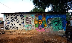 Unity is Power (Mr Baggins) Tags: streetart graffiti soweto kliptown ladyaiko