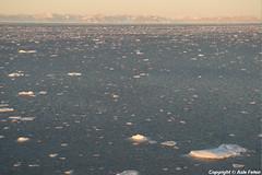 Grnlanshavet (Asle Feten) Tags: greenland grnland grnlandshavet