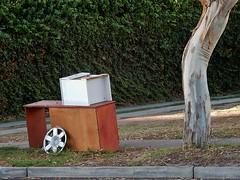 Roadside Junk with a Twist (mikecogh) Tags: junk treetrunk rubbish left hubcap twisted cupboard henleybeach