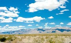 Cloud Shadows (hecticskeptic) Tags: arizona birds spring woodpecker squirrel hummingbird desert cardinal nogales birding az deer hummingbirds morgan californiadesert maderacanyon arizonadesert southernarizona mexicanjay eleganttrogon lakepatagonia markmorgan markamorgan